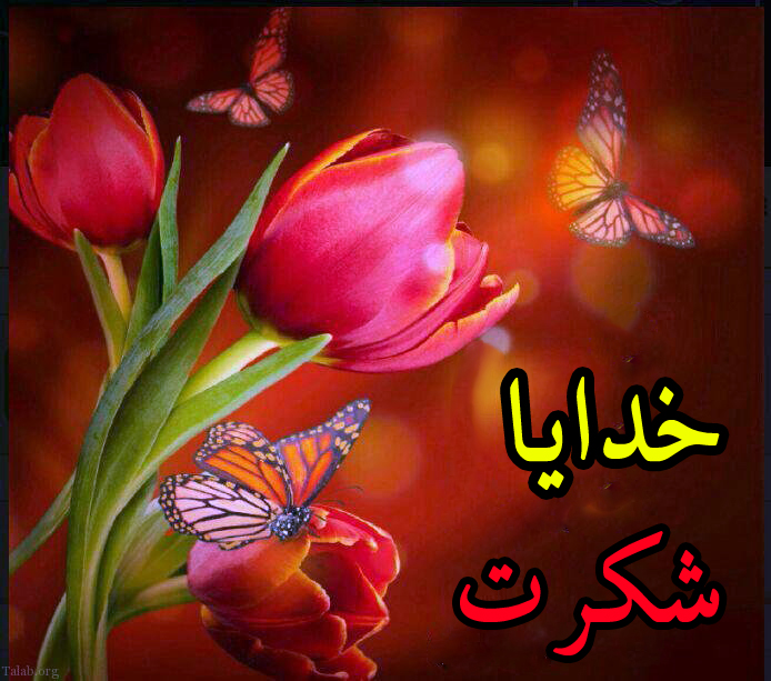 عکس پروفایل خدا در کنار گل