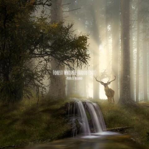 دانلود آهنگ Peder B. Helland به نام Forest Whisper