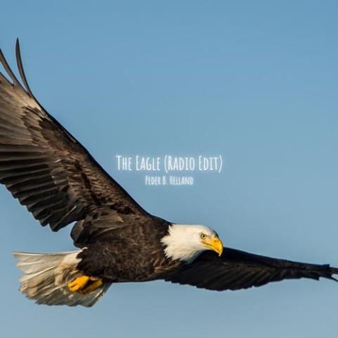 دانلود آهنگ Peder B. Helland به نام The Eagle
