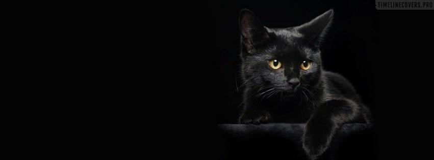 black_cat-facebook-cover_ogjw.jpg