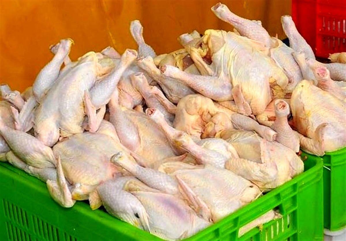 خرید مرغ دولتی با طعم کرونا؛ آشفته بازار مرغ در شهرستان دماوند تمامی ندارد.دوباره بازار مرغ مانند ماههای گذشته آشفته شده و مردم را ،در شرایط کرونایی بسیار خطرناک به صفهای طولانی کشانده است.مردم شهرستان دماوند، طی روزهای گذشته برای تامین مرغ مورد نیاز خود با کمبودهایی روبرو بودند و این کمبود مرغ موجب نارضایتی مردم شده است چراکه با توجه به اوضاع کنونی اقتصادی و گرانی گوشت قرمز، گوشت مرغ یکی از اقلام پرمصرف غذایی محسوب میشد که با کمبود و گران شدن قیمت گوشت مرغ، این اقلام اساسی و مورد نیاز مردم نیز از سفرهها پرکشید.