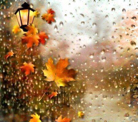 کرمانشاه سرد و بارانی می شود