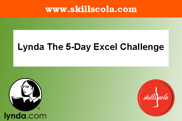 Lynda The 5-Day Excel Challenge