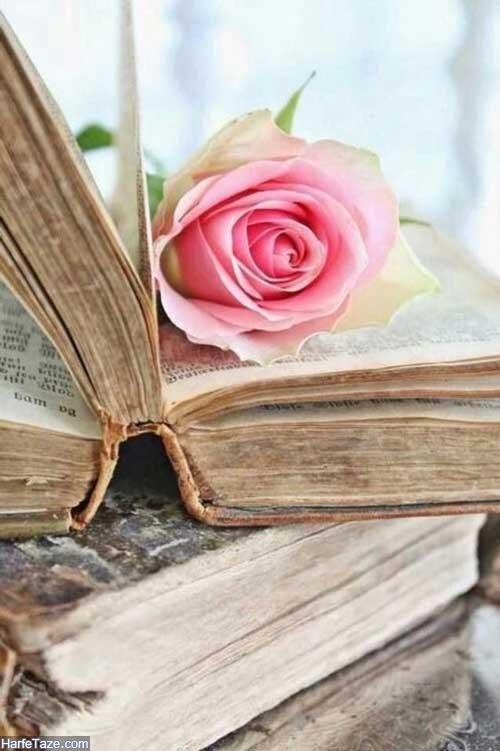 عکس پروفایل کتاب و گل